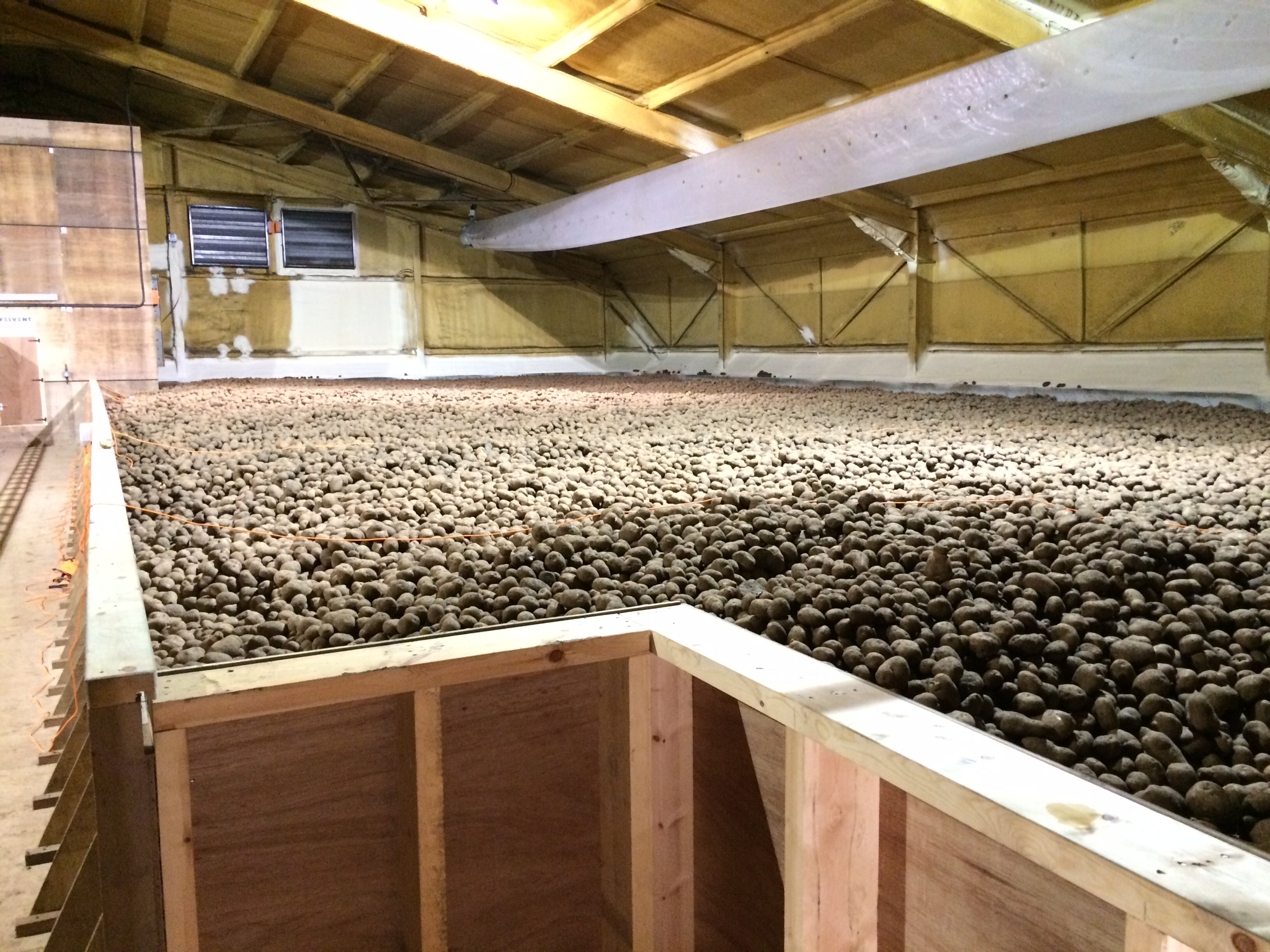 Bulk Potato Store Conversion